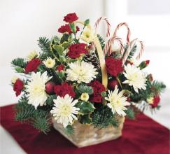 Candy Cane Lane Holiday Basket