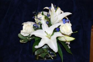 Lutz Lilies and Roses LZ-25