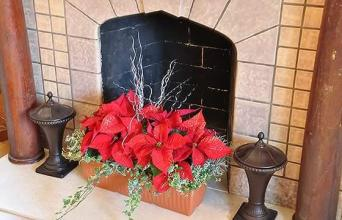 Hearthside Poinsettia Planter